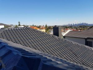 roof painting Potts Point