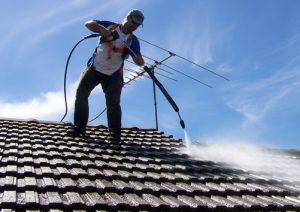 Cambridge Park Roof Cleaning