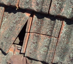 emergency Roof Repair Bickley Vale