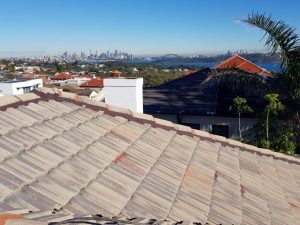 Crows Nest roof painting services